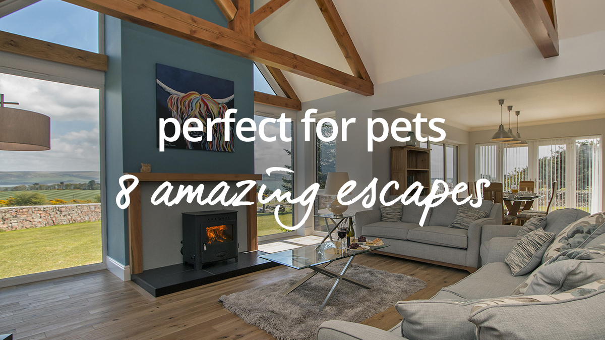 pet friendly escapes