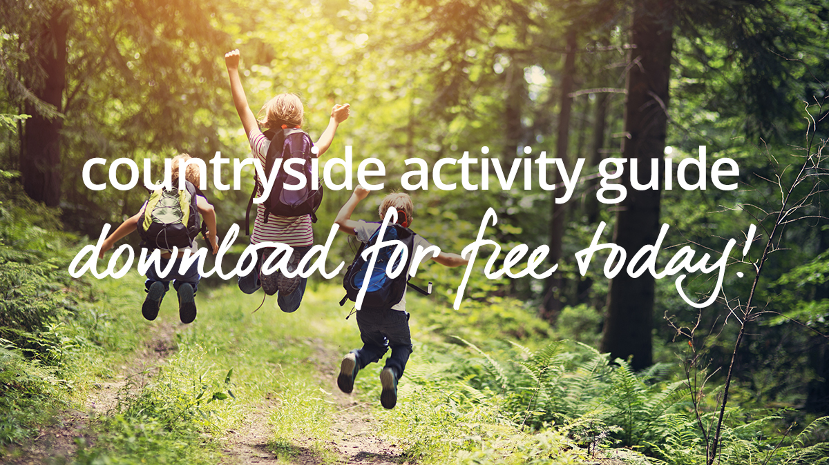 free activity guide