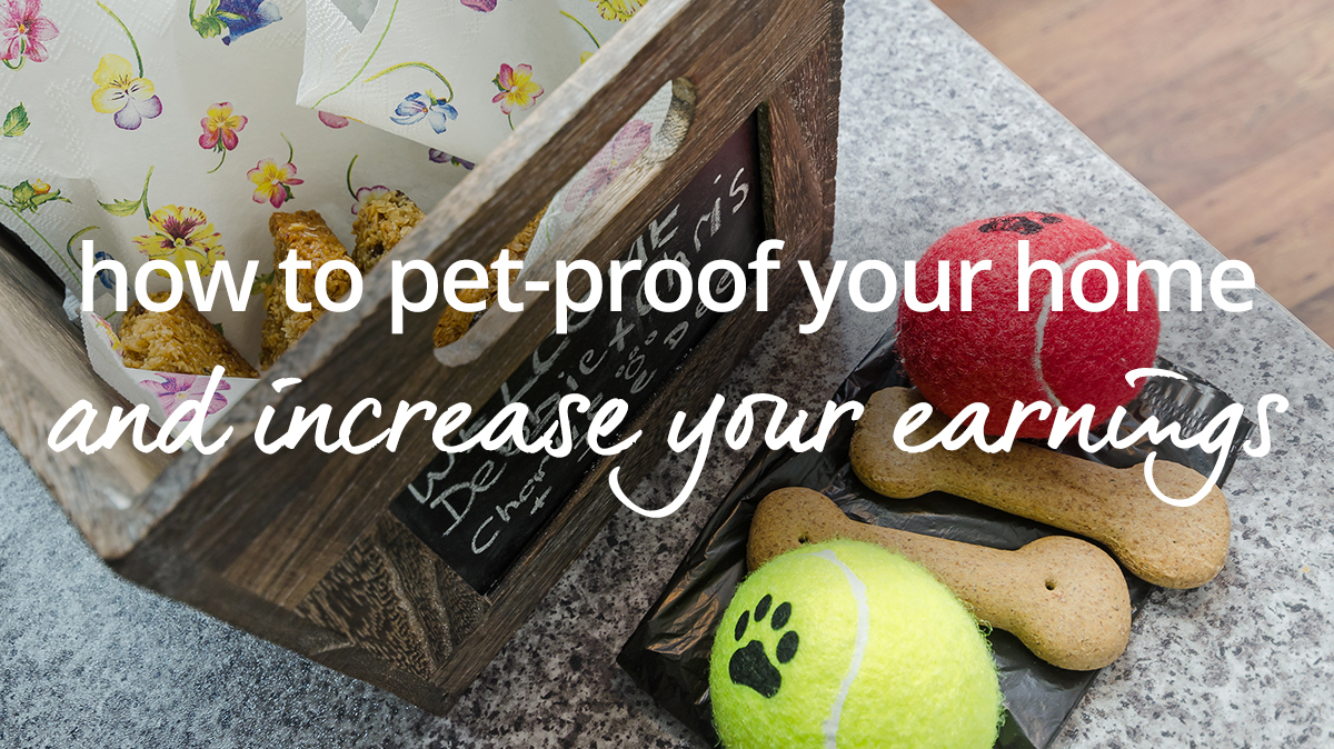 Pet proof your holiday home