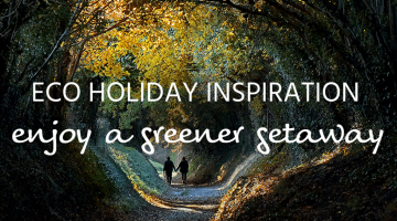 eco holidays header